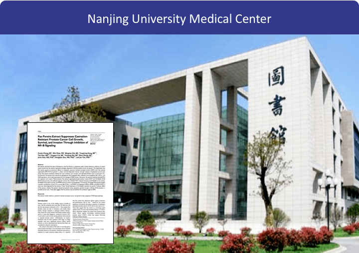 The Beljanski Foundation extends its scientific collaboration to the University of Nanjing (China) for research on Prostate Inflammation