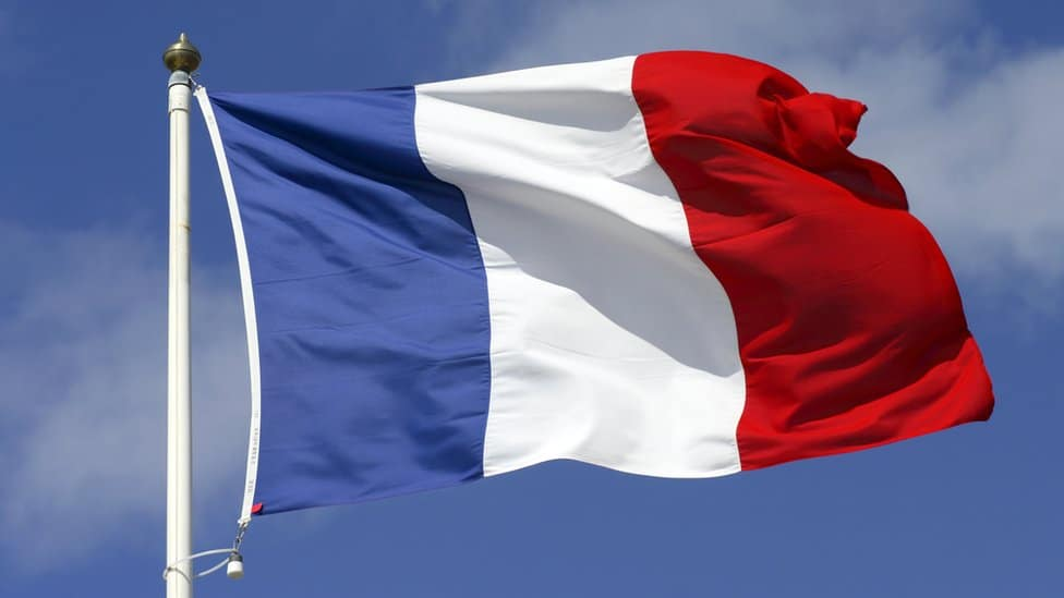 Beljanski emigrates to France